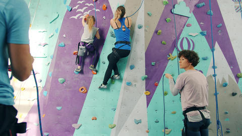 Group of people climbing up artificial wall and belaying from the ground indoors Live Action