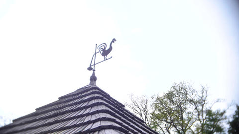 Weather vane in rooster shape on the roof Live Action