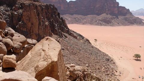 Wadi Live Action