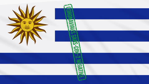 Uruguay swaying flag with a green stamp of freedom from coronavirus, loop Animation