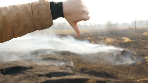 Dislike near a smoking field. Hand close-up Live Action