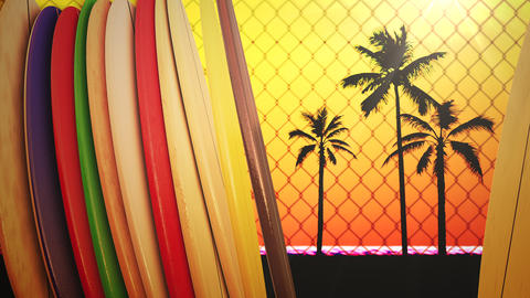 Closeup surfing boards and tropical leaves, summer background Animation