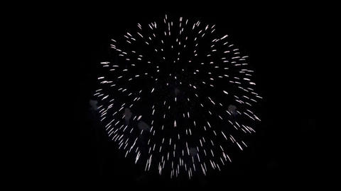 Beautiful Multi colored Fireworks in the Night sky Live Action