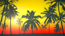 Panoramic view of tropical landscape with palm trees and sunset, summer background Animation