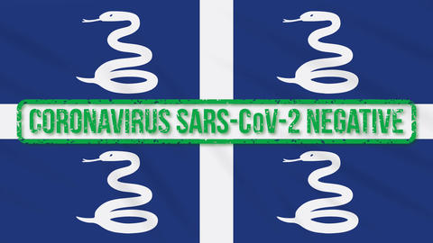 Martinique swaying flag with green stamp of freedom from coronavirus, loop Animation
