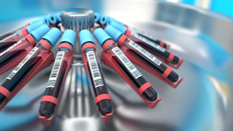 Blood samples in the test tubes in the centrifuge Animation