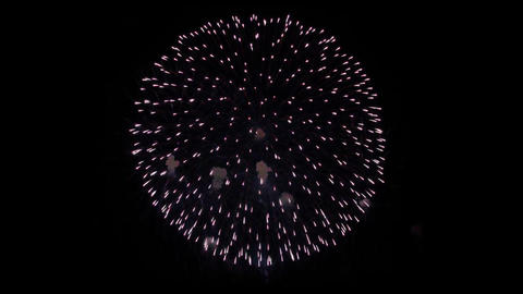 Colorful Fireworks Explosion Light in the Night Live Action