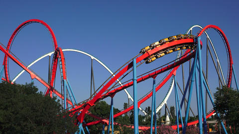 Multiple Rollercoasters At Amusement Park Live Action