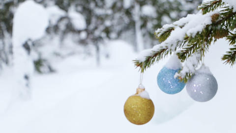 Winter Forest and Christmas Balls on the Fir-Tree Footage