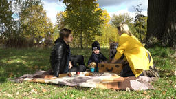Family picnicking in the park Footage