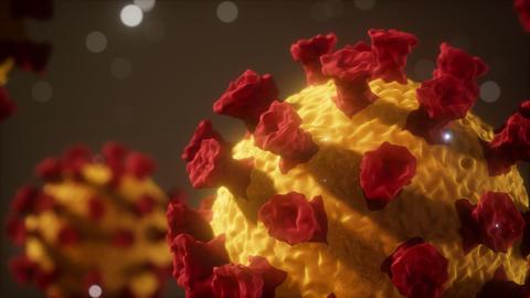Corona virus Covid 19 macro model Live Action
