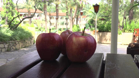 Apples on the Table in the Garden Live Action