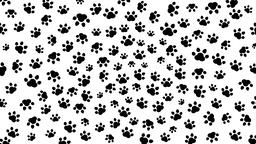 Dog cat footprint animation Animation