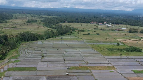 the drone flies sideways overlooking the rice fields on the horizon mountains Live Action