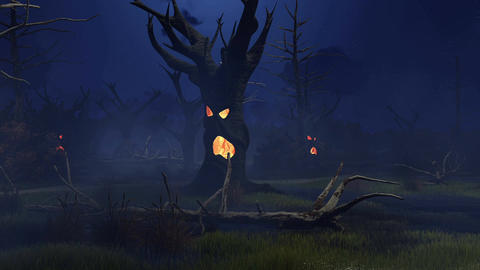 Fantastic spooky trees on swamp at misty night Footage