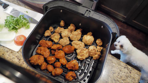 Home cooking cauliflower buffalo bites, air fryer, pet dog looks up, vegetarian Live Action