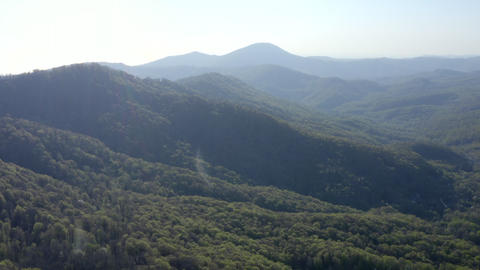 Aerial panorama mountain valley covered green summer forest. Summer highlands valley. View from Live Action