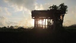 Balinese Farmer Is Burning Stubble In Rice Field