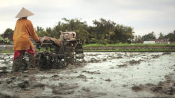 Farmer working with a motor plow in a wet rice field near Ubud Bali Footage