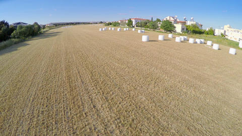 Top view of endless harvested field. Aerial shot of farming land. Agriculture Footage