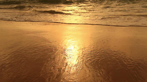 Tranquil idyllic scene of a golden sunset at beach Live Action