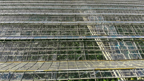 Large industrial greenhouses. Flight over greenhouses in abandoned condition Live Action