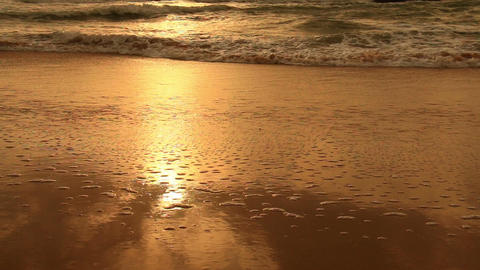 Tranquil idyllic scene of a golden sunset at beach Footage