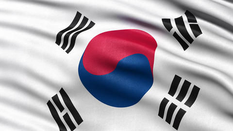 South Korea flag seamless loop Animation