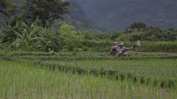 Sapa Vietnam Farmers And Views 0