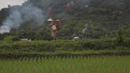 Sapa Vietnam Farmers And Views 1