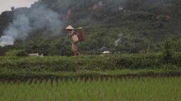 Sapa Vietnam Farmers And Views 1