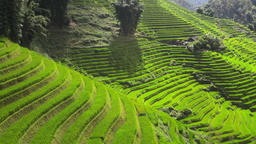 Time-lapse of the sun rays through the rice terraces valley in Sapa Vietnam Footage