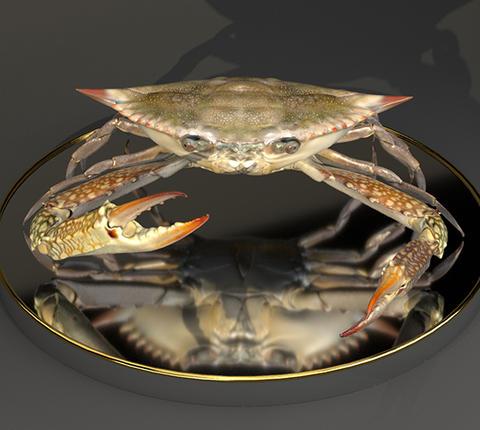 The Crab Modelo 3D