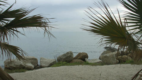 Beautiful view of rippling lagoon through exotic palm trees. Seaside recreation Footage