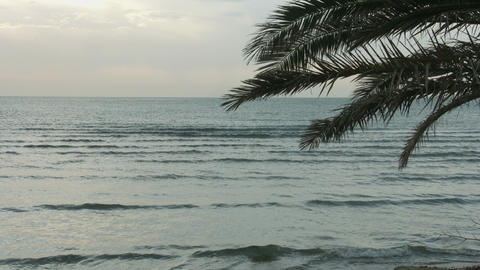 Summer vacation at exotic tropical resort. Choppy water surface of endless sea Footage