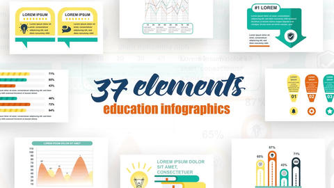 Infographics vol.25 After Effects Template