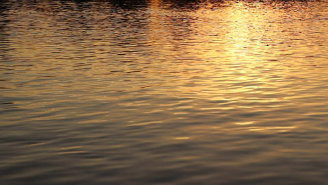 Calm water surface ripples background. Warm evening backdrop Live Action