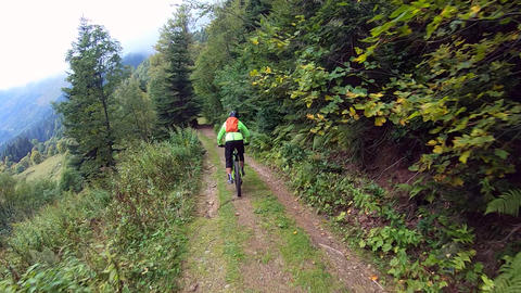 Bicyclist riding on mtb bicycle in summer green forest road at mountain range trail. Point view Live Action