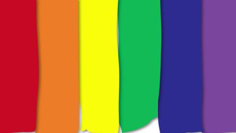 Rainbow flag Lgtb Gay pride Animation