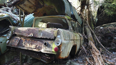 Abandoned retro car in Forest Live Action