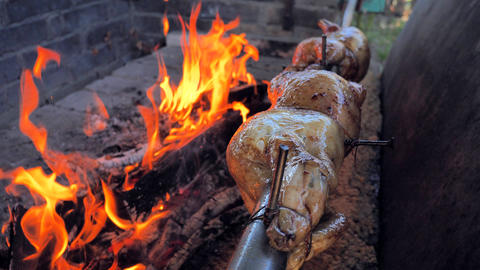Chicken roasting over an open wood fire outdoor cooking . Roasted chicken Cooking on The Flaming Hot Live Action