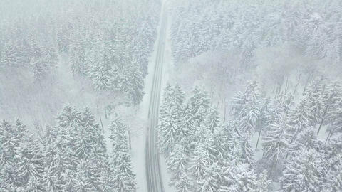 AERIAL: Flight over beautiful white Snow Forest street in German forest Taunus Live Action