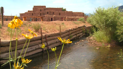 Yellow flowers near the Taos pueblo in New Mexico Stock Video Footage