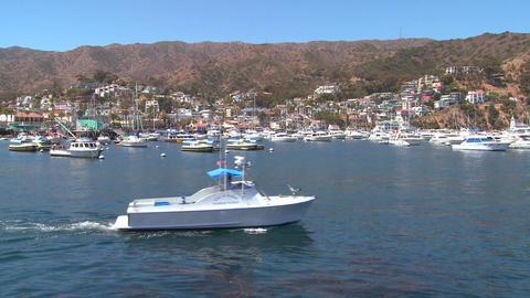 Wide establishing shot of catalina Island Footage