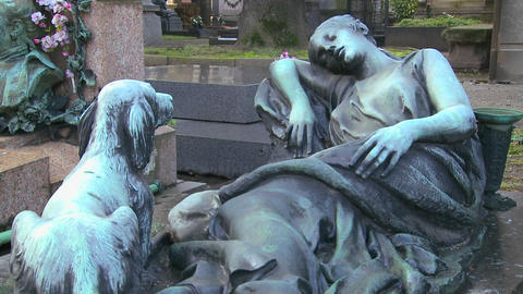 A sculpture in a cemetery depicts a loyal dog wait Stock Video Footage