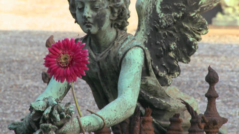 An angel sculpture in a cemetery on a grave Footage