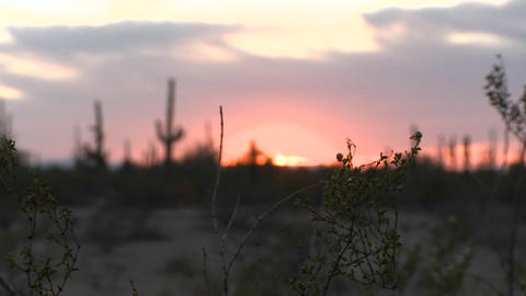 Night falls in the desert as the sun sinks to the horizon Stock Video Footage