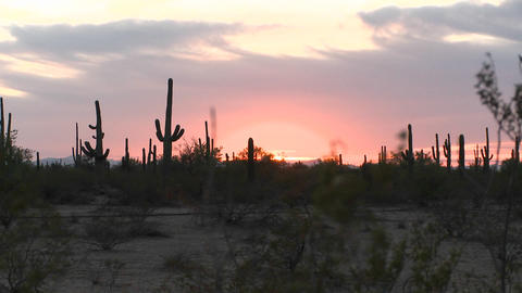 Night falls in the desert as the sun sinks to the horizon Footage