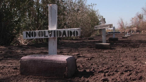 Graves are marked with signs stating they are not forgotten Footage