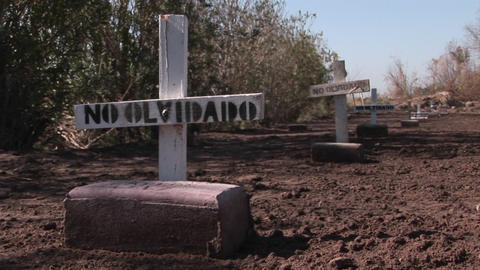 Graves are marked with signs stating they are not forgotten Stock Video Footage